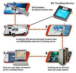Teltonika FM1100 - GPS Vehicle Tracker