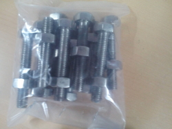 SS 310 Bolts, Nuts and Washer