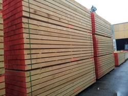 WHITE WOOD SUPPLIERS IN UAE
