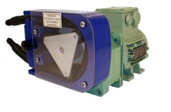 Peristaltic pumps's