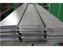Stainless Steel 304N Flat