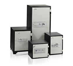 SAFES VAULTS IN UAE