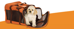 PET RELOCATION SERVICES IN UAE