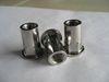 Stainless Steel 304L Class 3000 Insert