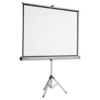 TRIPOD/PORTABLE PROJECTION SCREEN