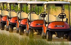 Golf & Utility Vehicle Suppliers  from HYDROTURF INTERNATIONAL FZCO