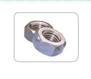 Nuts & Bolts from ROLEX FITTINGS INDIA PVT. LTD.