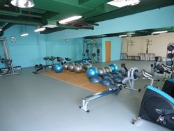 GYM, PVC and Rubber flooring from APG INTERNATIONAL LLC
