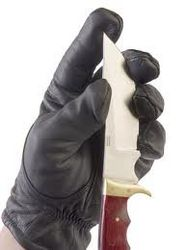 Cut resistant glove from GULF SAFETY EQUIPS TRADING LLC