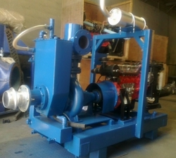 "Leo 6"" x 5"" inch dewatering pump from LEO ENGINEERING SERVICES LLC"