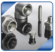 Carbon & Alloy Steel Forged Fittings from RAJRATAN STEEL CENTRE