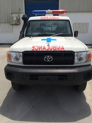 Ambulance Conversion from VLADCO FZE