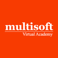 Professional Training Programs from MULTISOFT VIRTUAL ACADEMY
