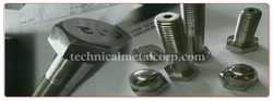 Hex Bolt Manufacturers In India from TECHNICAL METAL CORPORATION