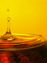 Lubricants in UAE