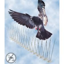 ANTI BIRD PIGEON CONTROL Steel Bird Wire Spikes Pigeon Repeller Suppliers Exporters Fire Escape Chutes, SS Bird wire, Dealers Hotel Contractors in UAE  Dubai, Abu Dhabi, Qatar, Saudi, Jordan, Iran, Iran, Africa, Kenya, UK, Ethiopia, Ghana, Algeria, Baku,