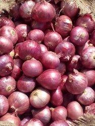 FRUIT & VEGETABLE IMPORTERS & WHOLESALERS