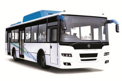Transport buses