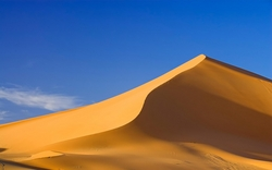 DUNE SAND SUPPLIER IN U.A.E