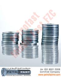 Flat Washer (DIN 125)
