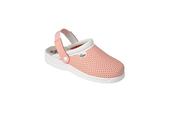 Dian Chef / / Catering Shoe Clogs
