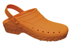 Dian Clog / Chef/ Catering  Shoes