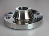 SS 316Ti Flanges