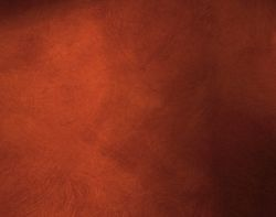 Decorative Paint Dealers from CONTOURS PAINTING LLC (DECORATIVE PAINTS)