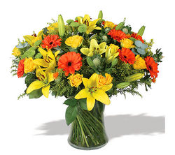 Birthday Flower suppliers in UAE from CHOICE FLOWERS EST