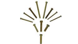 Brass Screws from MAHAVIR ENTERPRISES