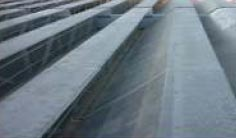 GRP Roofing Sheets from AMBUSH FIBRE GLASS WORKS L.L.C.
