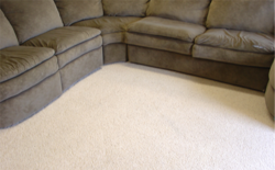 Upholstery Dustmite cleaning Services from ALLERX CLEANING SERVICES L.L.C