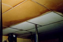 Ceiling/Wall Cleaning from ALLERX CLEANING SERVICES L.L.C
