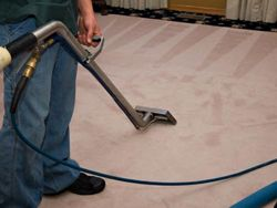 Carpet Shampooing from ALLERX CLEANING SERVICES L.L.C