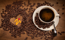 COFFEE IMPORTERS & MERCHANTS from BARTECHCO