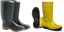 Safety Shoes Suppliers in UAE from DELMA ROYAL TRADING  L L C