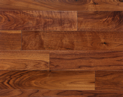 SOLID AMERICAN WALNUT from FLOOR EXPO LLC