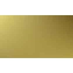Brass Sheet from NANDINI STEEL