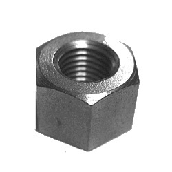 Carbon Steel Nuts from NANDINI STEEL