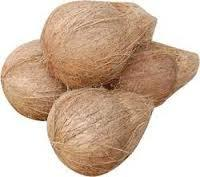Semi Husked Coconut from G.D. EXPORTS