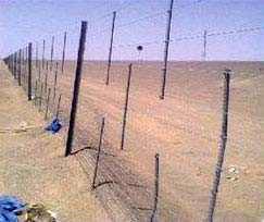 SAND FENCING SUPPLIERS in abu dhabi from STARLIGHT FENCING WORKS