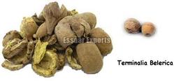 Terminalia Belerica from ESSAAR EXPORTS