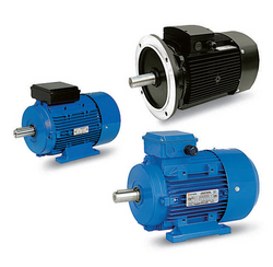 electric motor suppliers in sharjah from C.R.I PUMPS