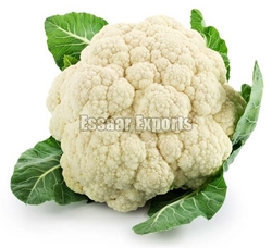 Fresh Cauliflower from ESSAAR EXPORTS