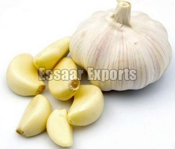 Fresh Garlic from ESSAAR EXPORTS