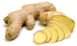 Fresh Ginger from ESSAAR EXPORTS