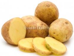 Fresh Potato from ESSAAR EXPORTS