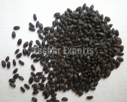 Basil Seeds from ESSAAR EXPORTS