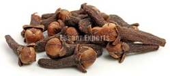 More about Cloves