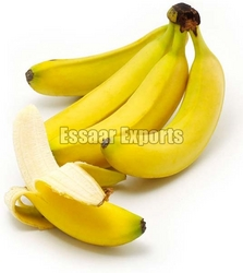 Fresh Bananas from ESSAAR EXPORTS